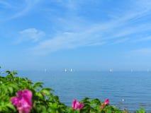 Mer baltique avec beaucoup de bateaux à voile Photos libres de droits