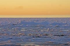 Mer baltique congelée Photo stock