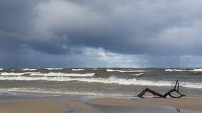 Mer baltique dans le temps de chute photographie stock libre de droits