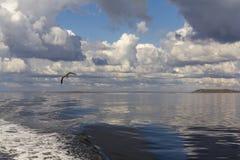 Mer blanche Images libres de droits