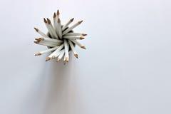 Mer blyertspennor än dig kan behandla Arkivfoto