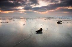 Mer congelée Photo libre de droits