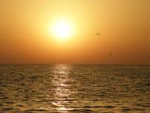 Mer, coucher du soleil et mouettes image stock