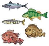 Mer creatures-6 de vecteur illustration libre de droits