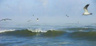 Mer déchaînée en jour givré Image libre de droits