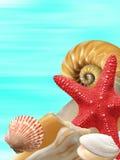 Mer d'été Photographie stock libre de droits