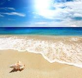 mer d'horizontal Photo libre de droits