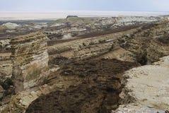 Mer de 10 Aral, plateau d'Usturt image stock