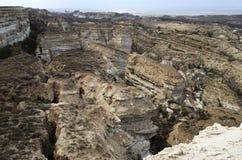 Mer de 17 Aral, plateau d'Usturt photo libre de droits