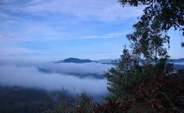 Mer de brouillard Image stock