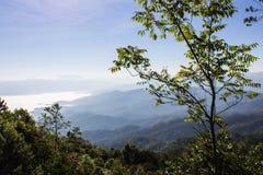 Mer de brume avec Doi Luang Chiang Dao, barrage de Doi de forme de vue dans Wianghaeng Image stock