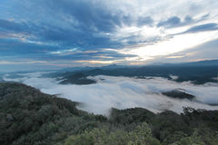 Mer de brume dans le temps de matin Photos libres de droits