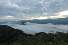 Mer de brume dans le temps de matin Photos stock