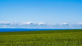 Mer de champ de blé et navires de commerce côtiers Photo libre de droits