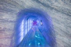 Mer de Glace Museum royaltyfria foton