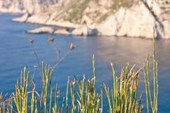 Mer de Kefalonia Photo stock