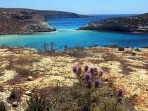 Mer de l'île de LAMPEDUSA en Italie photos stock