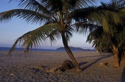MER DE L'AMÉRIQUE LATINE HONDURAS CARIBIAN Photos stock
