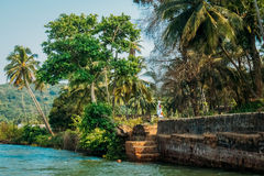 Mer de nature de plage de Goa d'Inde Photos stock