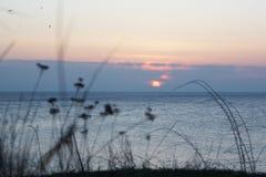 Mer de paysage de soirée Photographie stock