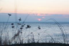 Mer de paysage de soirée Photographie stock libre de droits