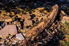 Mer de Rocky Shore With Log In Marmara photographie stock libre de droits