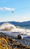 Mer de turquoise contre le ciel bleu Image libre de droits