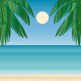 Mer de voyage de tourisme d'horizon de Palm Beach Photo libre de droits