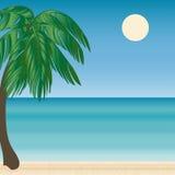 Mer de voyage de tourisme d'horizon de Palm Beach Photographie stock