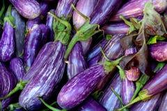 Mer des aubergines Photographie stock libre de droits