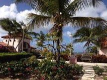 Mer des Caraïbes de paumes de villa d'hôtel images stock