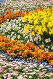 Mer des fleurs Images stock