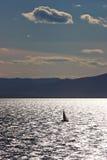 Mer du Japon. Yacht Image libre de droits