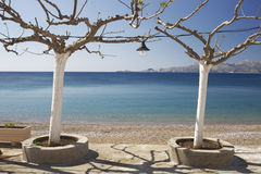 Mer et arbres photographie stock