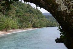 Mer et forêt Images libres de droits