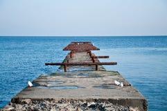 Mer et mouettes Photo libre de droits