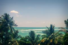 Mer et palmiers un ciel bleu clair Photos stock