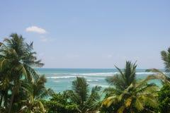 Mer et palmiers un ciel bleu clair Images stock