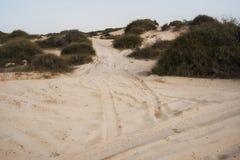 Mer morte en Israël Photographie stock libre de droits