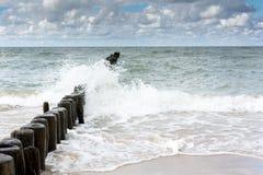 Mer nordique avec les vagues blanches Photographie stock