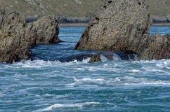 Mer occidentale du Pays de Galles photos stock
