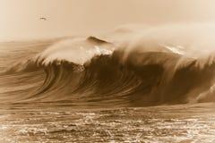 Mer orageuse de sépia Photo stock