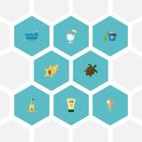 Mer plate d'icônes, tortue, Shell And Other Vector Elements Ensemble d'icônes plates d'été Images libres de droits