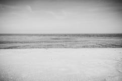 Mer polonaise des brise-lames et des dunes de sable Photographie stock libre de droits