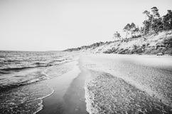 Mer polonaise des brise-lames et des dunes de sable Photo stock