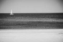 Mer polonaise des brise-lames et des dunes de sable Photographie stock