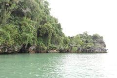 Mer principale de crocodile Image stock