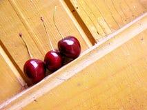 mer regnig Cherry royaltyfri foto