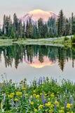 Mer regnig reflexion för Mt på laken Tipso på soluppgången, Washington Royaltyfri Foto