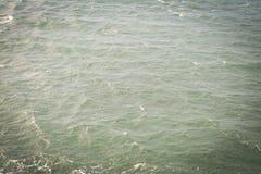 Mer sarde Photo libre de droits